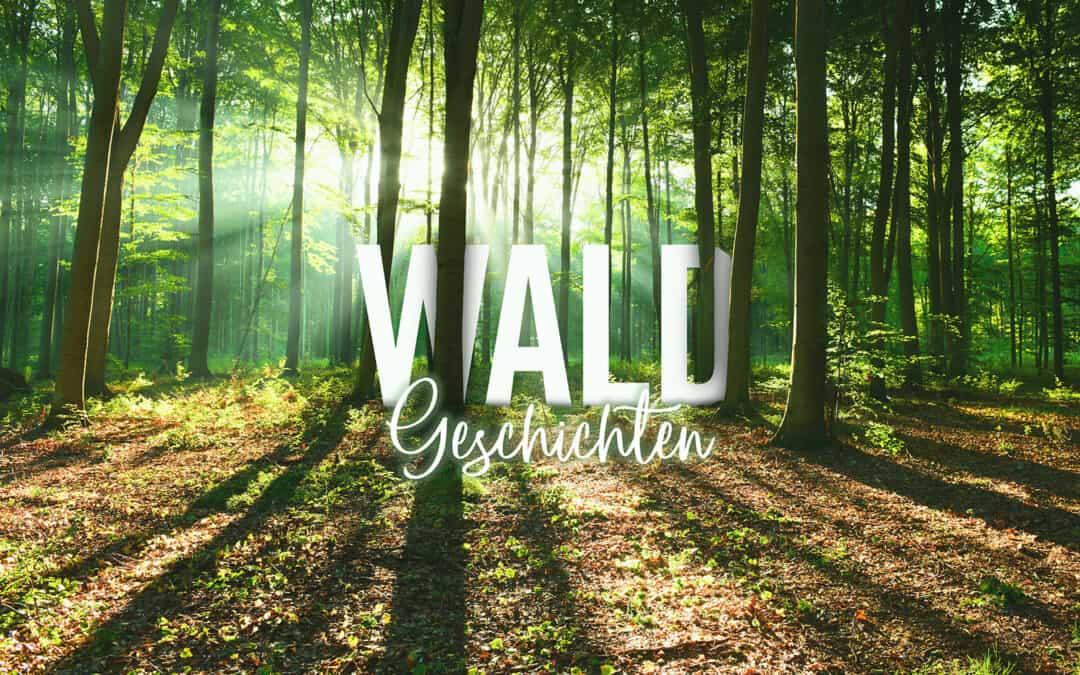 waldgeschichten.com ist online